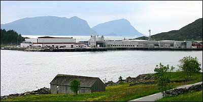 I Kalvåg er det fleire fiskeverksemder. Størst er Domstein-eigde Bremanger fiskeindustri (midten). (Foto: Arild Nybø © 2003)