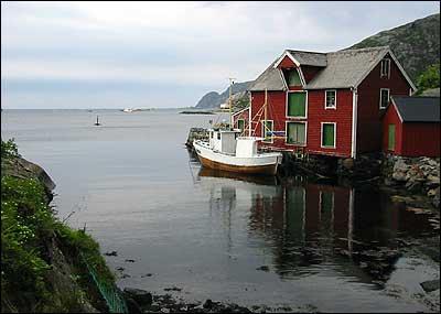Ved Steinset vart det teke 127.000 hektoliter sild i 1950. (Foto: Arild Nybø © 2003)