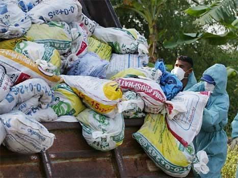 Det er gjennoført masseslakt av kyllingar i fleire land i Asia. Dette biletet er frå Thailand. (AFP/Scanpix-foto)