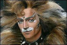 Jan Erik er ikke flau over å stå på scenen i dag, her i forestillingen Cats som Rum Tum Tugger. Foto: Rolf Konow