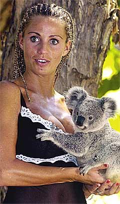 Puppulær: Til og med koalabjørnen har skjønt hvorfor Jordan vil synge. Foto: Brian Cassey, AP.