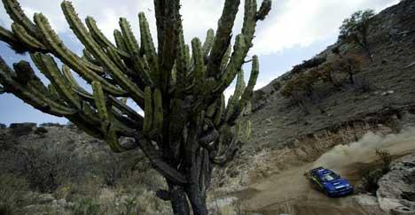 (foto: www.swrt.com)