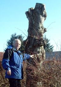 Sigve Svendsen viser et av trærne som er helt ødelagt. (Foto: Camilla Hatleskog)