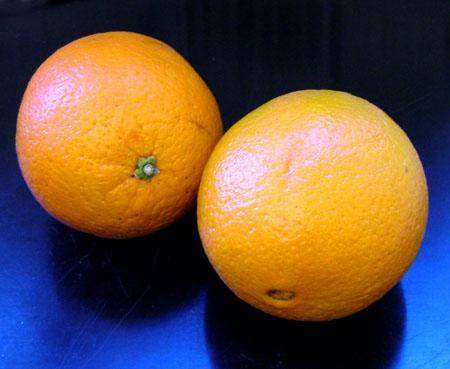Mange appelsiner er for tiden redd for å bli utsatt for harde slag når de ligger i bunnen av ryggsekker rundt om i fjellheimen, for så å i verste fall ende opp som grønnsak. (Kjell Lindås) Foto: NRK