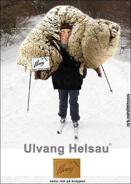 (Basert på et bilde innsendt av Arne Killingbergtrø, armatua.com)