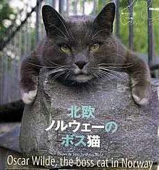 Bergenskatten Oscar Wilde i det japanske kattebladet Cats. (Faksimile)
