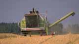Antall ulykker i landbruket øker.