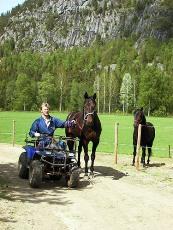 Magnetic Power og trener Trond Anderssen. Foto: Stall Buller'n.
