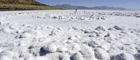 UKJENT LIV: Disse saltkrystallene fra Great Salt Lake i Utah, USA, inneholder ukjente livsformer som kanskje kan være lik det livet som var i innsjøene på Mars. (Foto:AP Photo/Douglas C. Pizac)
