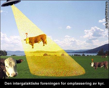(Innsendt av Douwe Boschma)