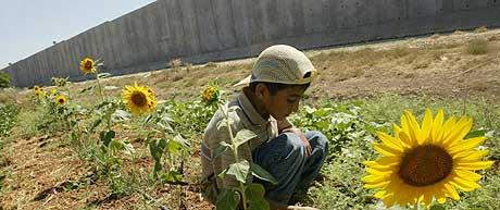 EGEN STAT: Palestinerne får neppe sin egen stat i løpet av neste år, tror USA. Her leker en palestinsk gutt nær den kontroversielle israelske muren mandag 12. juli. (Foto: Reuters/Abed Omar Qusini)