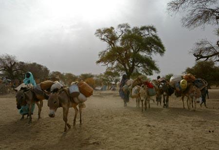 Flyktninger fra Darfur krysser grensen til Tsjad, etter å ha skjult seg i åsene i Darfur i nesten et år. (Foto: K.. Prinsloo, AP)