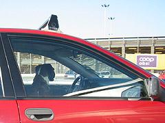 Hundeeigarar gløymer ofte hundane sine i solheite bilar. Foto: Per Kristian Johansen, NRK