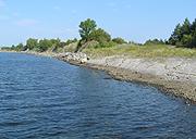 På Langøya risikerer båtturister å møte sulten rev. Foto NRK.