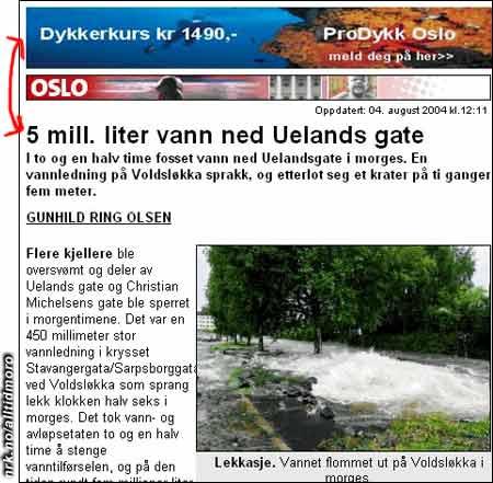 Aftenpostens nettutgave 4/8 2004 (Innsendt av Bjørn Egil Bjørnsson)