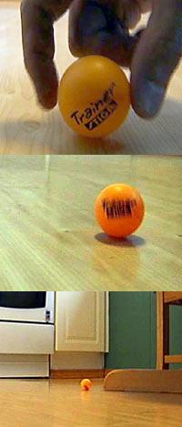 En liten ball som blir plassert på kjøkkengulvet triller avgårde på egen hånd på det skjeve gulvet. (Foto: Jørn Nordli/NRK)