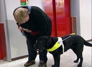 Førerhunden Doffen viser vei til heisen, men så blir det verre for Tone. (Foto: Bjørn Opsahl/NRK)