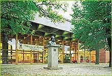 Ibsenhuset kan bli varmet opp av flisfyringsanlegg.