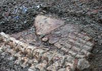 Skjelettet av en svaneøgle var funnet tidligere. Foto: NRK