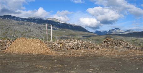 De gamle plankene av vinterhogd malmfuru har høy kvalitet og resten blir flis. Foto: Gunnar Sandvik