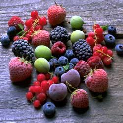 <i>Foto: Opplysningskontoret for frukt og grønnsaker</i>
