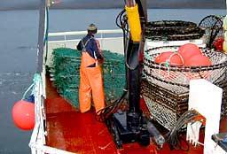 Mannskapet på «Solhaug Senior» har innrømmet ulovlig fiske etter at det ble tatt i natt. (Foto: Kystvakta)