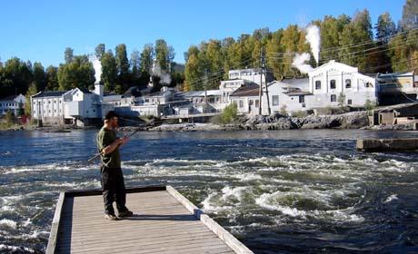 Laksefiske ved Hellefossen i Øvre Eiker. Foto: NRK