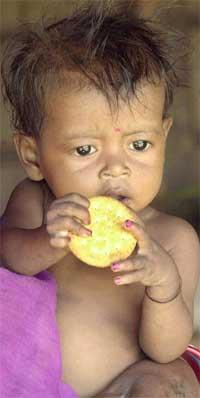 Et lite barn spiser kjeks i en landsby som ble rammet av sult like ved Calcutta i India i sommer. (Foto: Scanpix / AP / Bikas Das)