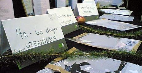 Den nedbrytbare plasten frå Sande vekkjer internasjonal interesse. Bildet er frå lanseringa i oktober. (Foto: Per Christian Dyrø)