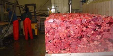 Slakteriavfall som tidlegare vart kasta, er nå ettertrakta eksportvare. (Foto: Vera Wold/NRK)