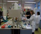 Insitutt for bioteknologi ved NTNU er fremst i verden på alginatforskning. Foto: NRK
