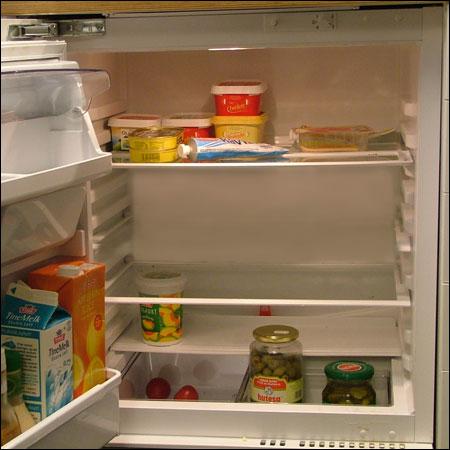 I det David Attenborough rev opp kjøleskapsdøra midt på natta, kunne han bevise det han hadde påstått i 26 år: Både brelettpakker og makrellbokser parret seg. (Stian Thorgaard) Foto: NRK