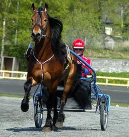 Torpa Carl og Åsbjørn Tengsareid.