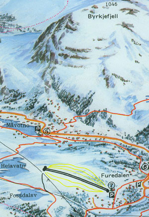 Det er i dette området på Kvamskogen det nye alpinanlegget er planlagt.