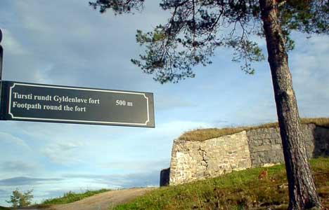 Områdene rundt flere av forsvarsverkene er ryddet for gress, skog og kratt. Flere nye vandringsløyper har kommet i stand på Fredriksten festning. Foto: Rainer Prang, NRK.