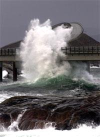 Nemo må si farvel til Atlanterhavsparken. Finn han seg til rette ved Atlanterhavsvegen ? Foto: NRK.