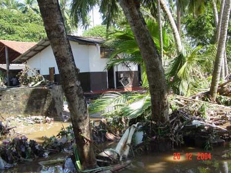 Sri Lanka etter flodbølgen (Foto: Beate Arnestad)