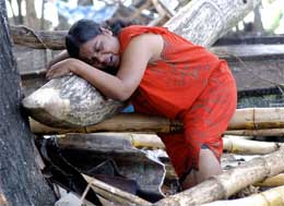 I Sri Lanka har mange flykta frå dei mest utsette områda. Berre i eitt av fylka på austkysten manglar 125.000 flyktningar både telt og mat.