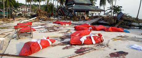 Kripos skal hjelpe politi i Thailand med å identifiser dei omkomne. Her frå øya Phi-Phi. Foto: AFP PHOTO/ROSLAN RAHMAN