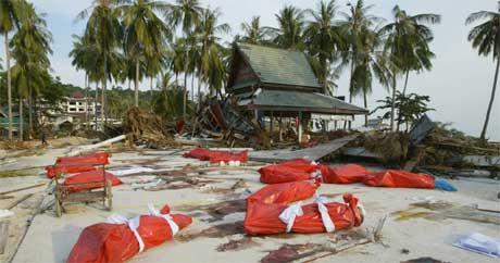 Døde kropper ligger på stranda på øya Phi Phi i det sørlige Thailand. (Foto: AFP/Scanpix)
