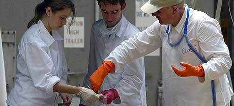 IDENTIFISERER OMKOMNE: Statsminister Kjell Magne Bondevik frykter at 1000 nordmenn i verste fall er omkommet. Bildet viser tyske og østerrikske eksperter som samler DNA-prøver fra omkomne i Phuket, Thailand, 1. januar 2005. (Foto: Saeed Khan/AFP)