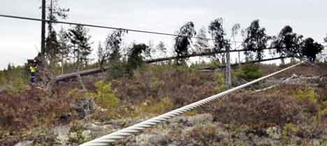 Mannskaper fra energiselskapene har lørdag og søndag hatt hendene fulle med å rydde unna trefall over kraftlinjene.Foto: Thomas Bjørnflaten / SCANPIX