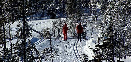 En rolig skitur er ikke nok til å holde formen.