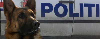 - Me gir oss, ropa gutane då dei blei henta inn av politihunden. Foto: Bjørn Sigurdsøn/Scanpix