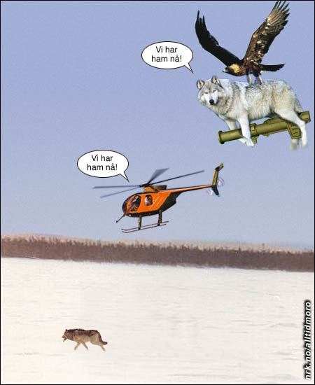 Samarbeid mellom sjeldne dyrearter. (Alltid Moro)