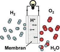 En brenselcelle lager elektrisk strøm fra hydrogen og oksygen. Avfallet blir rent vann (H2O). Illustrasjon: Ole Martin Løvvik