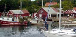 Båteiernes egen dårlige adferd har ført til flere restriksjoner rundt Koster de senere årene. Blant annet er det innført ankringsforbud i Kostersundet andre steder enn ved etablerte gjestehavner og brygger. Foto: Rainer Prang, NRK