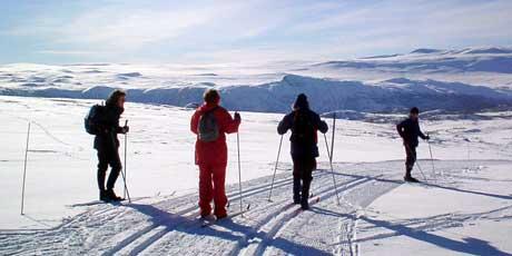 På Rena planlegges nå et helårsanlegg for skigåere. Foto: Nrk