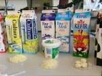 Melkesyrebakteriene har laget alle disse!