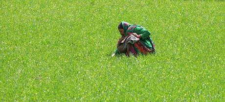 Hjelper frihandel på fattigdommen i verden? Bildet er fra Aghanistan. Foto: Reuters/Scanpix.